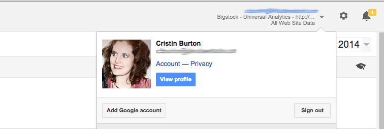 Give another person access to Google Analytics of your site