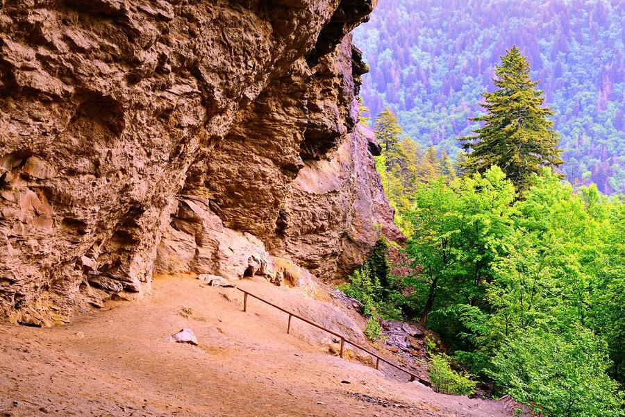 SeanPavonePhoto   Smoky Mountains National Forest