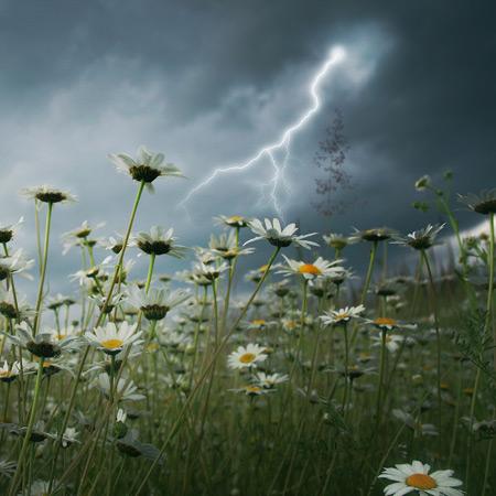 Lightni  ng Strikes Over Daisy Field Image ©Elenamiv