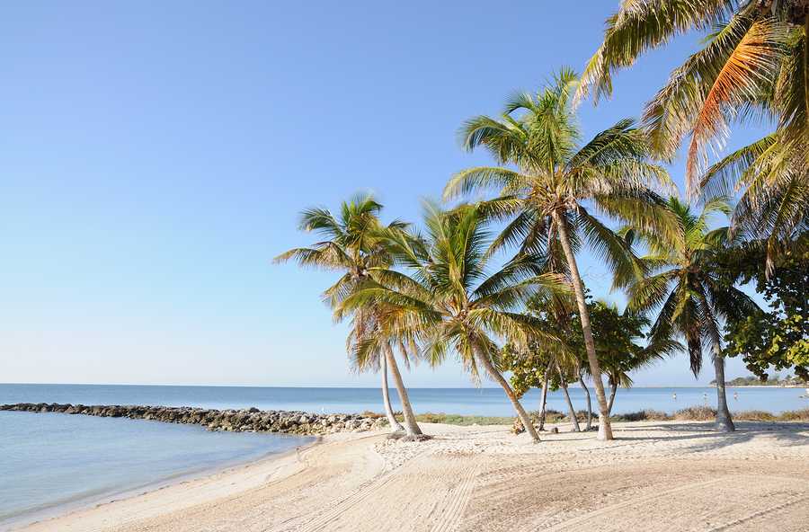 Image of Key West Beach in Florida by p.lange