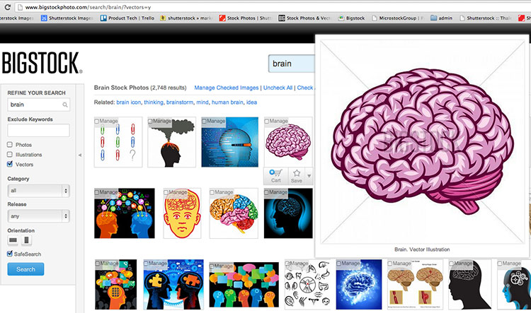 search for vector on bigstock. Intro to working with vectors