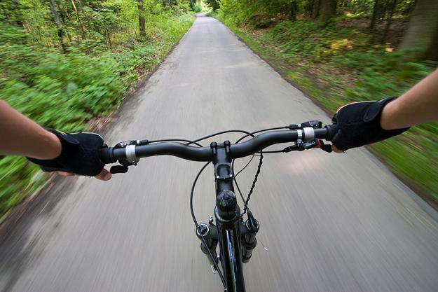 Biking on a Forest Road