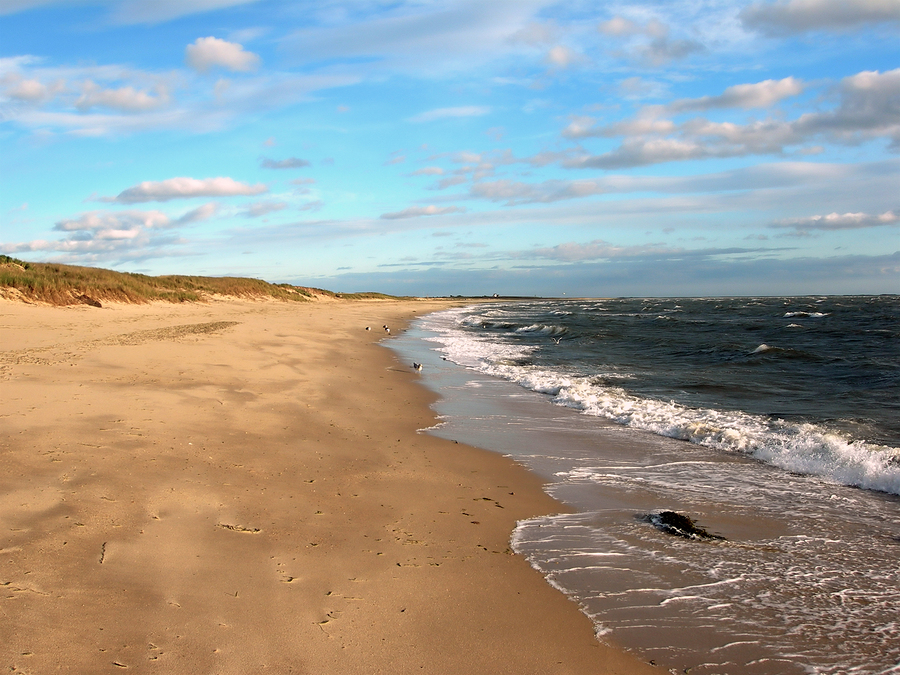 Image of Cape Cod Beach by mooncusser