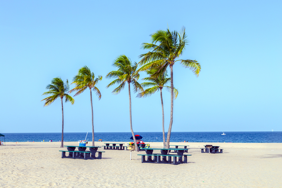 Image of Fort Lauderdale by Jorg Hackemann