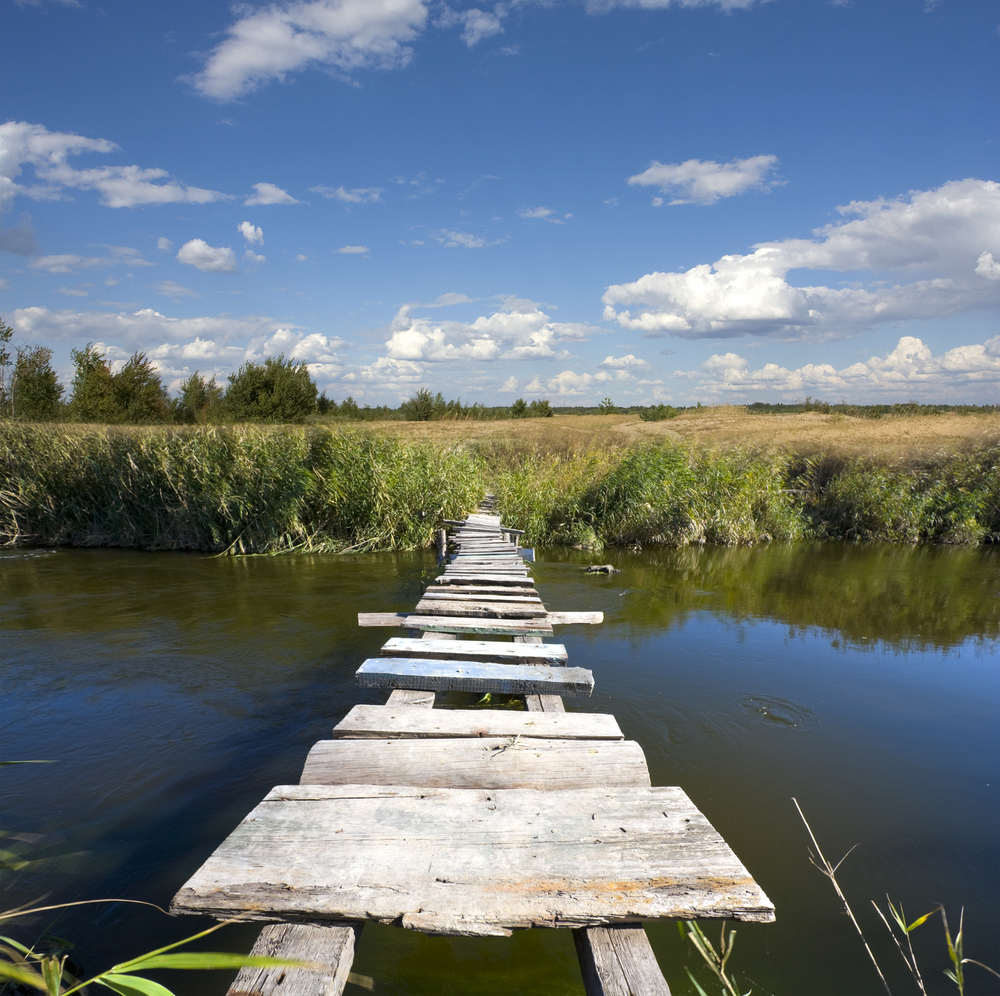 Free Image of the week wooden bridge photo
