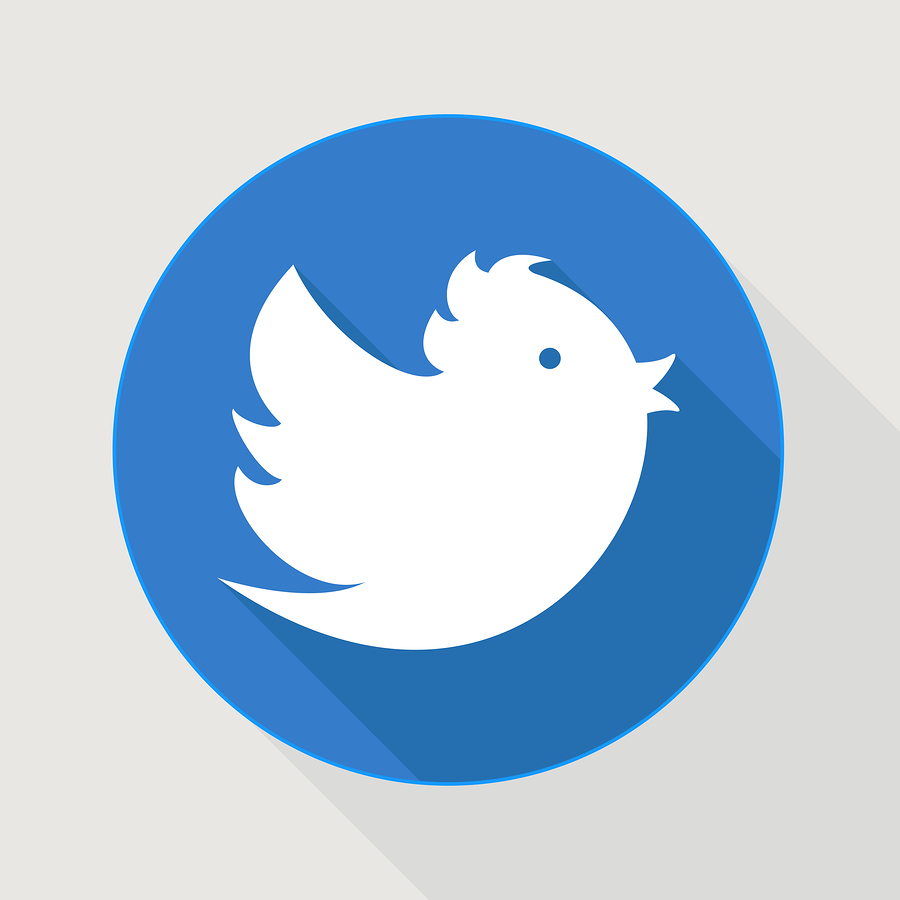 Twitter-ish bird |  oculo